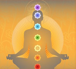 Beginner Chakra Yoga Series | Veracis Introductory Yoga
